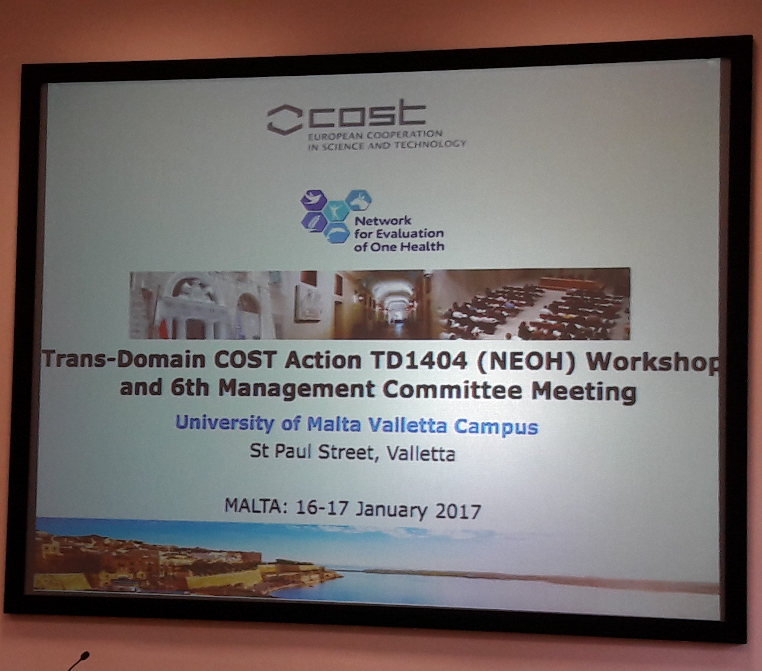 NEOH workshop, Malta, 16-17 January 2017